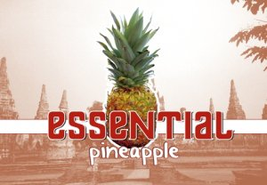 電子タバコ用Drop Essential Pineapple 10ml