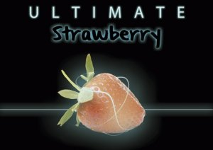 電子タバコ用Drop Ultimate Strawberry 10ml