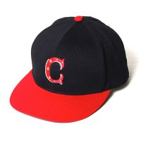 <img class='new_mark_img1' src='//img.shop-pro.jp/img/new/icons5.gif' style='border:none;display:inline;margin:0px;padding:0px;width:auto;' />CALEE - Twill base ball cap