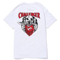 <img class='new_mark_img1' src='//img.shop-pro.jp/img/new/icons49.gif' style='border:none;display:inline;margin:0px;padding:0px;width:auto;' />CHALLENGER - FTC×CHALLENGER TEE