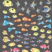 Resin club(レジンクラブ)【レジン 封入 シール】埋め込みレジンシール 熱帯魚アソート カラフル 1枚 両面加工 水彩 サカナ fish 生き物 マリン 海 ステッカー