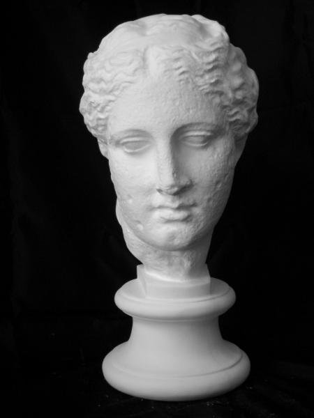 S−205 古代ヴィーナス首像(アバタのヴィーナス)(特)
