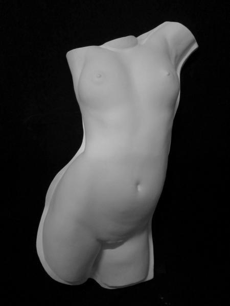 T−506 トルソー女子半面