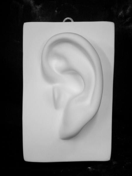 B−521 耳