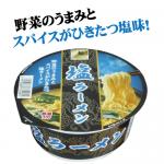 塩ラーメン(12個)