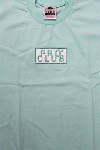 PROCLUB LIMITED HEAVY WEIGHT S/S TEE BOX LOGO 【PASTEL GRN】