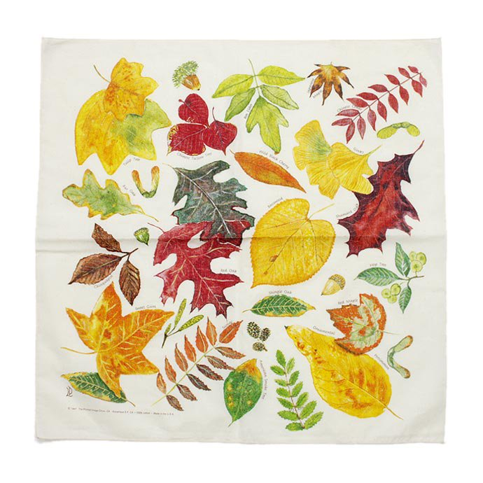 Other Brands The Printed Image / Nature Facts Bandanas - Fall Leaves(ブリンテッドイメージ/ネイチャープリントバンダナ フォールリーブス)<img class='new_mark_img2' src='//img.shop-pro.jp/img/new/icons47.gif' style='border:none;display:inline;margin:0px;padding:0px;width:auto;' /> 01