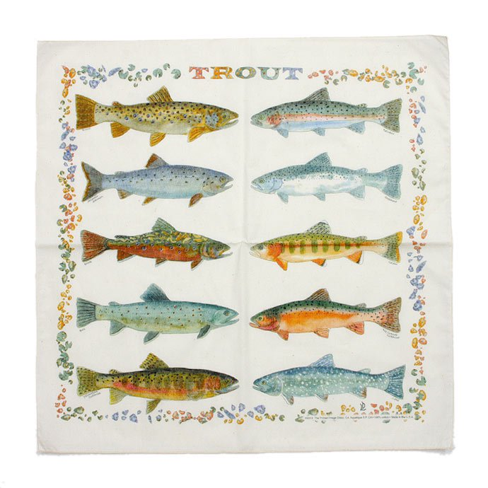 Other Brands The Printed Image / Nature Facts Bandanas - Trout(ブリンテッドイメージ/ネイチャープリントバンダナ トラウト) <img class='new_mark_img2' src='//img.shop-pro.jp/img/new/icons47.gif' style='border:none;display:inline;margin:0px;padding:0px;width:auto;' /> 01