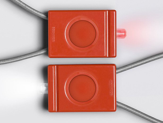 BOOKMAN BOOKMAN / Bookman Light - Raging Red<img class='new_mark_img2' src='//img.shop-pro.jp/img/new/icons47.gif' style='border:none;display:inline;margin:0px;padding:0px;width:auto;' /> 02