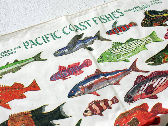 Other Brands The Printed Image / Nature Facts Bandanas - Pacific Coast Fishes ブリンテッドイメージ/ネイチャープリントバンダナ<img class='new_mark_img2' src='//img.shop-pro.jp/img/new/icons47.gif' style='border:none;display:inline;margin:0px;padding:0px;width:auto;' /> 02