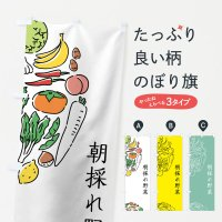 のぼり 朝採れ野菜 のぼり旗