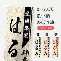 のぼり 神奈川県産はるみ のぼり旗