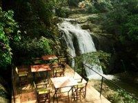エラ ジャングル リゾート