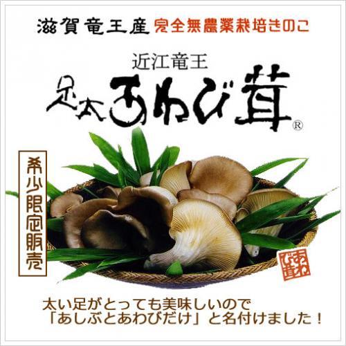 足太あわび茸(生)130g(滋賀竜王産)