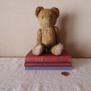 ハンガリー テディベアー グラスアイ hungary teddy bear old vintage glass eyes