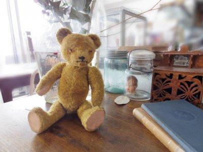 ハンガリー テディベアー プラスチックアイ イエロー hungary teddy bear old vintage plastic eyes