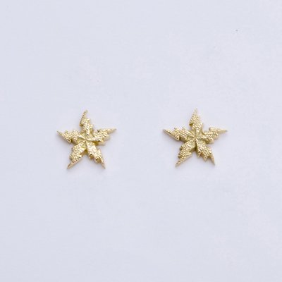 FLASH STAR EMBOSS pierced earrings