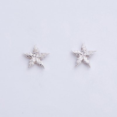 FLASH STAR EMBOSS SV pierced earrings