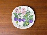 Arabia Botanica ウォールプレート Karhunvatukka / Rubus fruticosus(ブラックベリー)