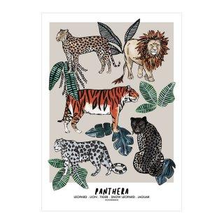 PANTHERA Jungle Children's Print
