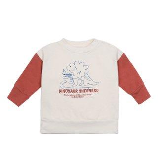 Dino Sweatshirt 12-36M