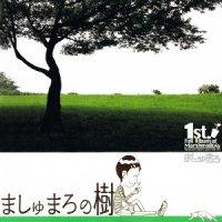 ましゅまろの樹