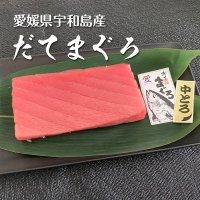 愛媛県産 極上だてまぐろ(本マグロ)中トロ柵(約200g)