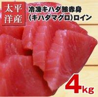 太平洋産冷凍キハダ鮪(キハダマグロ) 赤身 ロイン 4kg (1850円/1kg) 【業務用】【お得】