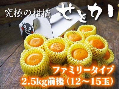 究極の柑橘『せとか』ファミリータイプ 2.5kg前後(15〜17玉入り)