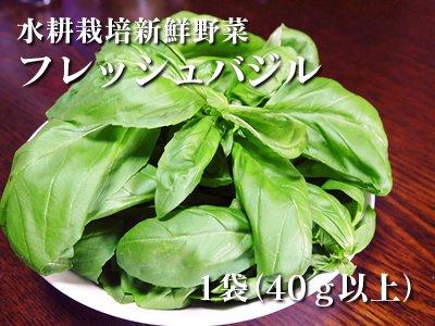 水耕栽培新鮮野菜 フレッシュバジル(1...