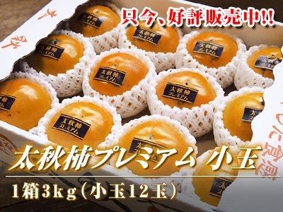 熊本産太秋柿プレミアム小玉3kg前後(小...