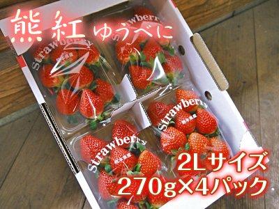 【チルド便】 熊本産イチゴ『熊紅(ゆうべに)』2Lサイズ 1箱/1パック(16玉前後)270g以上×4パック
