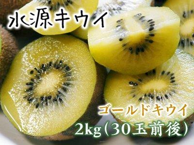 菊池水源キウイ(ゴールドのみ) 2kg(30...