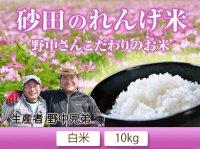 完全無農薬の砂田米 野中さんのこだわりれんげ米 白米10kg(5kg×2袋)