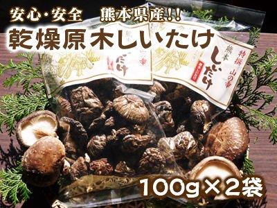 乾燥原木しいたけ(100g×2袋)