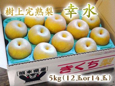 樹上完熟熊本梨『幸水』5kg(12玉or14玉入り)