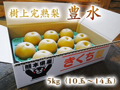 樹上完熟熊本梨『豊水』5kg(10玉or12玉入り)