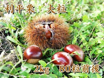 自然栽培で育てた利平栗 大粒 2kg(大粒サイズ:80粒前後)