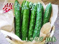 熊本産新鮮野菜 夢キュウリ Lサイズ 10本