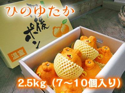 熊本産樹上完熟デコポン(肥後ポン)ひのゆたか2.5kg(7〜10個入り)秀品 数量限定