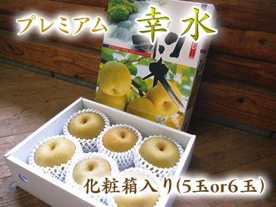 樹上完熟熊本梨『プレミアム幸水』化粧箱入り(5玉or6玉)