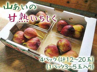 山あいの甘熟いちじく4パック(12〜16玉)