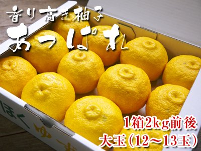 香り高き柚子 あっぱれ 大玉(1箱2kg前後 12〜13玉)