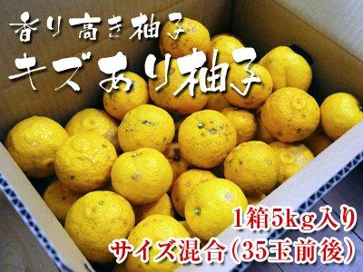 香り高き柚子 キズあり柚子5kg(1箱5kg 35玉前後)