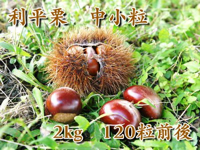 自然栽培で育てた利平栗 中小粒 2kg(中小粒サイズ:100粒前後)