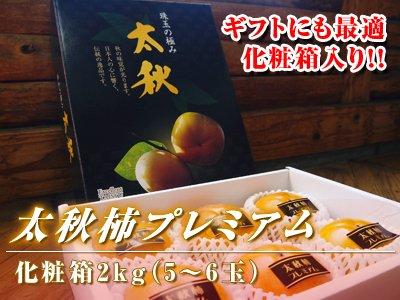 熊本産太秋柿プレミアム化粧箱入り 2kg前後(5玉〜6玉)
