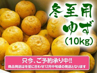 香り高き柚子 冬至用柚子10kg(1箱10kg 70玉前後)※商品はキズあり柚子と同様です。