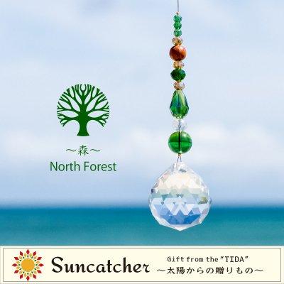 〜森〜North Forest/サンキャッチャー