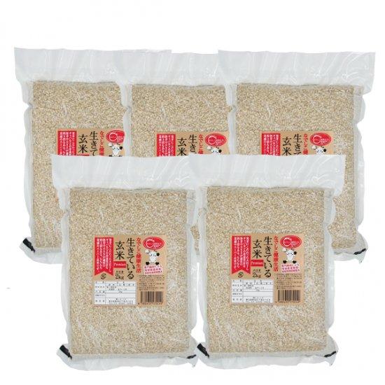 なでしこ健康生活【生きている玄米プレミアム×金のいぶき】10kg 農薬・化学肥料無使用 天日干し米 1等級米 令和元年産