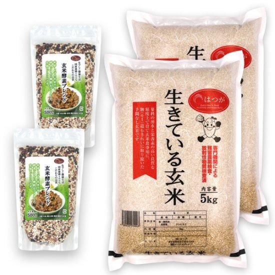 玄米酵素ごはんセットC(玄米酵素ブレンド500g×2 + 生きている玄米5kg×2) ☆令和元年産☆